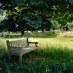 Queens Cottage Grounds, Kew, 2007, chromogenic print, 91 x 121.5 cm.