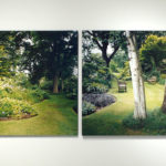 Installation View, Woodland Garden, Kew, 2007, chromogenic print, 91 x 121.5 cm.