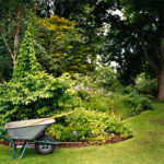 Wheelbarrow, Woodland Garden, Kew, 2007, chromogenic print, 91 x 121.5 cm.