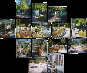 Cremation Garden, Mount Pleasant, 15 chromogenic prints, 18 in. x 39 in.