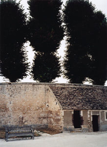 Trees, Vaux-le-Vicomte, 2003, chromogenic print, 30 in x 40 in.