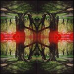 Kaleidoscape # 1, 1995-96, four chromogenic prints mounted on board, overall 48 in. x 48 in.
